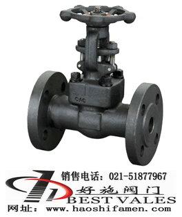 Z41Y锻钢法兰闸阀