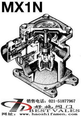 MX1N蒸汽-水混合阀